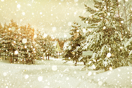 beautiful winter rural landscape with forest and village. retro toned scenery. Christmas and new year celebration winter scene