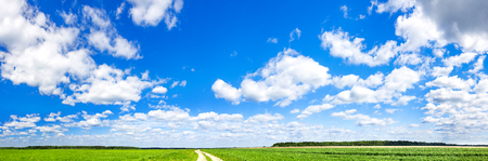 beautiful rural spring landscape with blue sky,white clouds and field. agriculture field with wheat