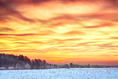 beautiful winter landscape with sunrise. panoramic view with a field of sunshine and orange sky