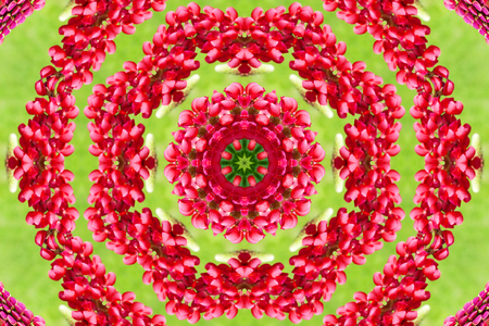 abstract background of floral pattern of a kaleidoscope. red green background fractal mandala. abstract kaleidoscopic arabesque. geometrical ornament flower pattern