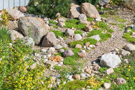 rock garden. gardening background. gardener backyard design element Imagens - 124782063
