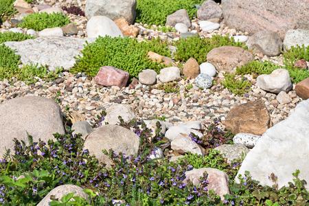 rock garden. gardening background. gardener backyard design element Imagens - 124782064