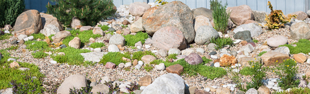 panorama of rock garden. gardening background panoramic view. gardener backyard design element