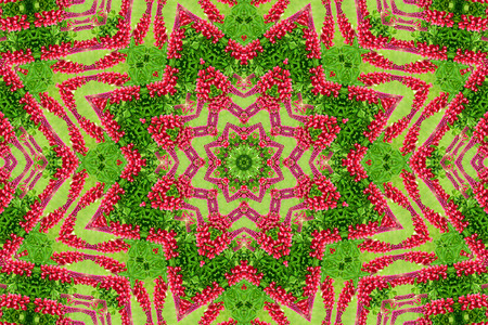 abstract background of flower pattern of a kaleidoscope. red green background fractal mandala. abstract kaleidoscopic arabesque. geometrical ornament  floral pattern 版權商用圖片