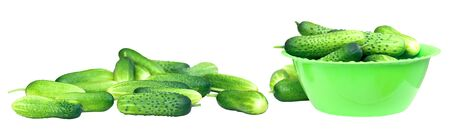 panorama green fresh cucumbers isolated on white background 版權商用圖片