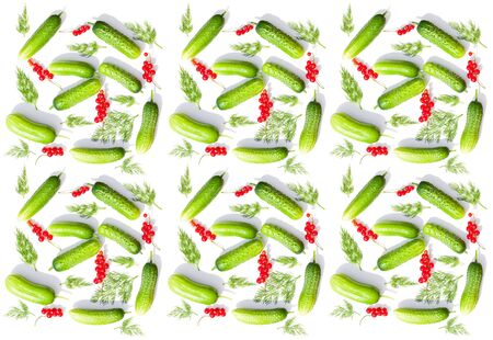 green fresh cucumbers and red currant isolated on white background.  berries and vegetable set flat design element. seamless background pattern green vegetable cucumber and dill 版權商用圖片