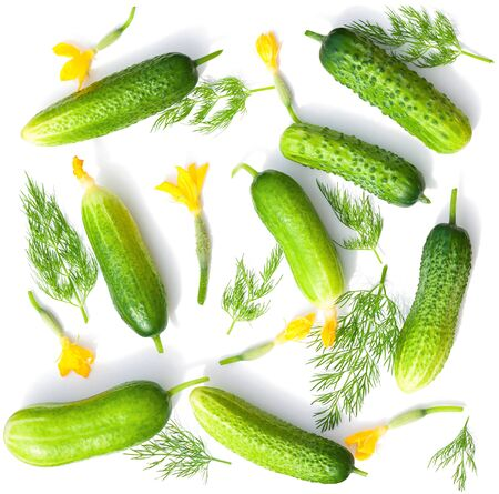 green fresh cucumbers isolated on white background. vegetable set flat design element. seamless background pattern green vegetable cucumber and dill