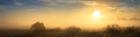 beautiful summer landscape panorama with sunrise and fog. panoramic view of sky and sunset 版權商用圖片