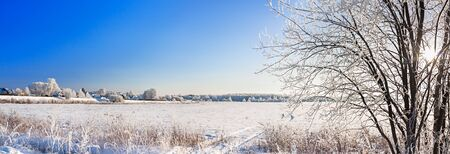 beautiful snowy winter landscape with forest and blue sky and sun. wintry forest trees in snow. frosty clear sunny day
