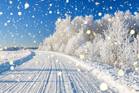 beautiful winter landscape with road and forest. panoramic view of snow