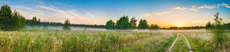 amazing panorama summer rural landscape with sunrise, fog and road. scenery spring panoramic view  版權商用圖片