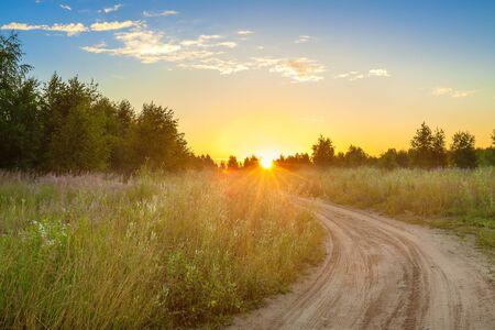 geweldig zomers landelijk landschap met zonsopgang, weg en bos. landschap lente scène uitzicht