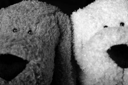 Two stuff dog head Banco de Imagens