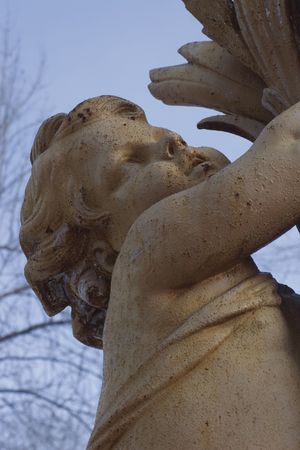 chiseled: Close up of a cherubin statue