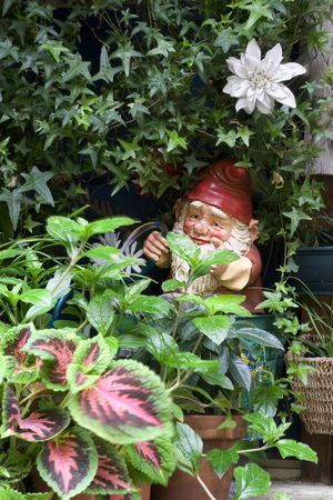 Garden gnome watering plants