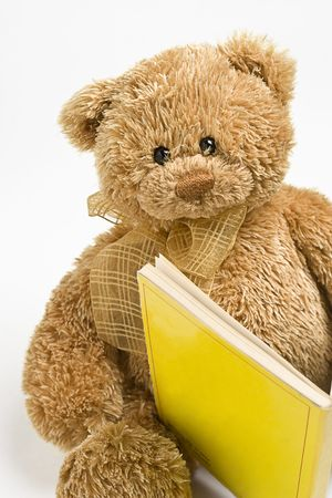Small teddy bear reading a book