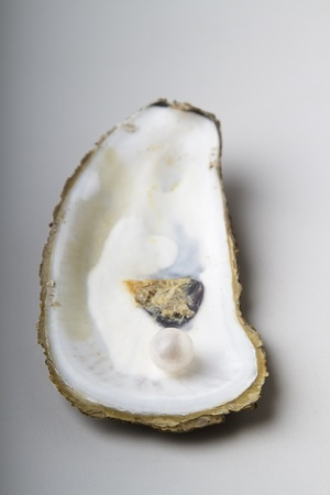 open oyster shell with one white pearl