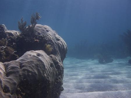 brilliant   undersea: Coral rock overlooking a sandy valley