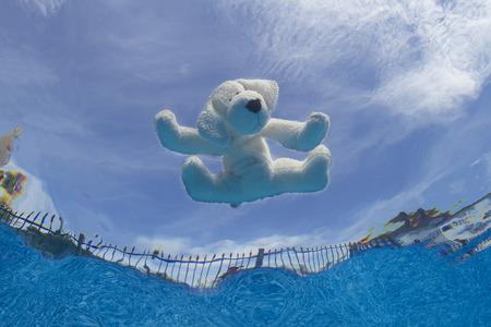 hond shape plus speelgoed drijvend op het oppervlak van een pool