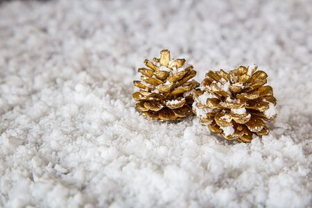 two small golden pinecone laying in the snow