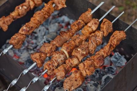 Shish kebab on coals Stock Photo
