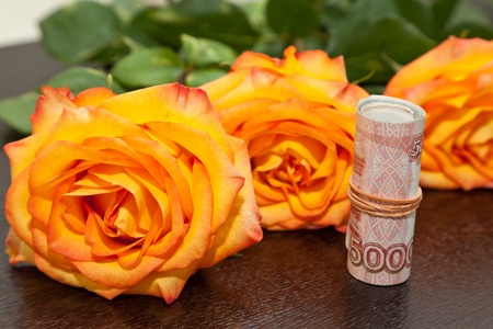Yellow roses and money photo