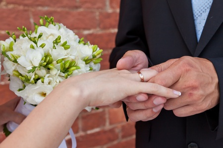The groom dresses a ring on a hand of the bride Stock Photo - 10699221