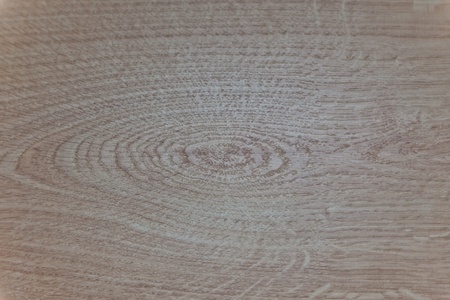 forest products: Tree structure on a laminate