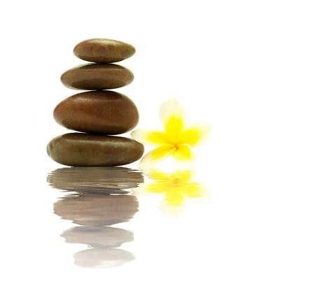 Zen Stones and Flower Stock Photo