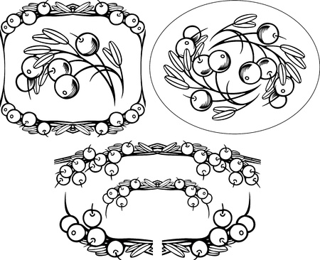 Cranberry engrawing Bild Illustration
