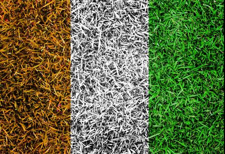 Cote D lvoire Flag color grass texture background Stock Photo - 29307784