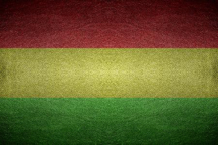 bandera de bolivia: Pantalla primer concepto Bolivia bandera en cuero PVC para el fondo