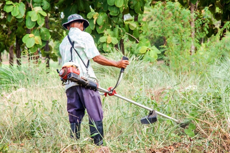 asian old man Mowing the Grass photo