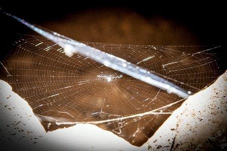 spider net: close up of center of spider net in cave Stock Photo