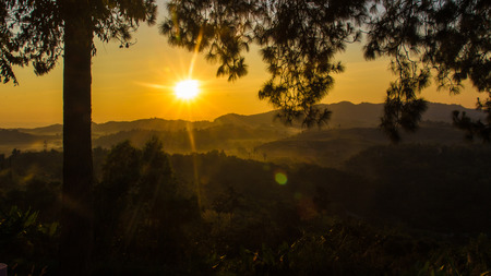 faintly visible: gold sunrise on the mountain and silhoutte pine tree landscape