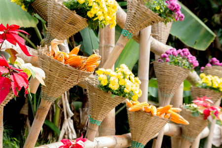 corn flower: decoration garden with rattan basket and bamboo hold flower and corn