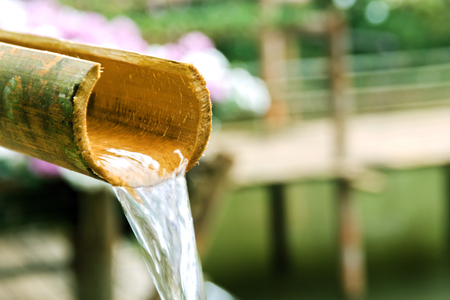 water fall: close up water fall with bamboo pipe zen concept