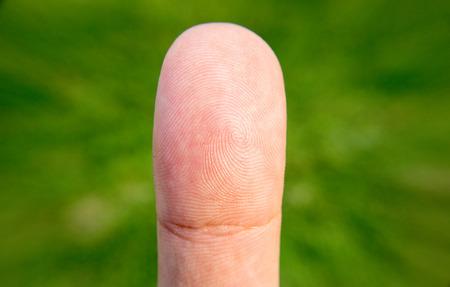 dedo: huella digital macro con el tumb a fondo borroso Foto de archivo