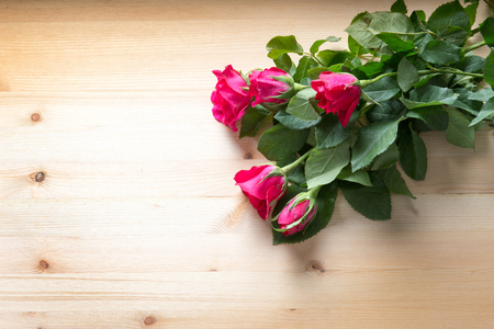 red and pink rose flower on wood table for gift to make relation in valentine day festival and copy space Stock Photo