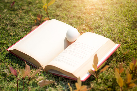 egg on old book in history of easter concept in outdoor Stock Photo