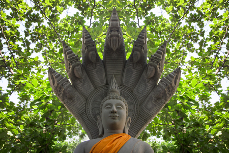 buddha figure with king cobra gardian figure from cement in forest like natural concept