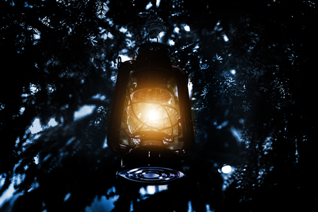 light lantern hanking on pine tree in dark background Stock Photo