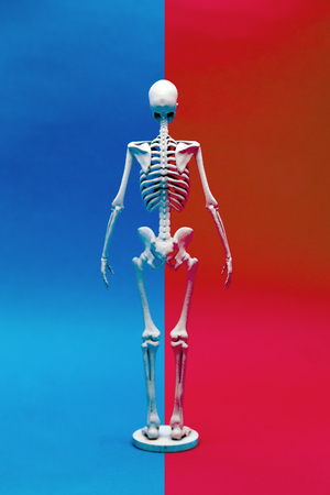 calcium human bone on difference color background in healthy concept Stock Photo