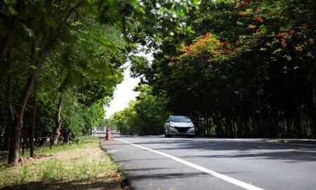 electric vihicle driving on road way with green tree like ecology friendly  Reklamní fotografie