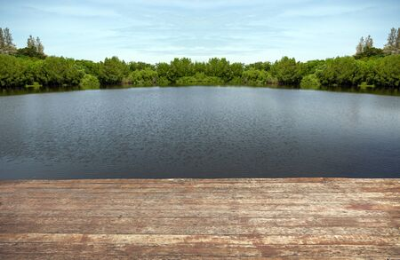 water pond of lake wood shore landscape for relax nature background