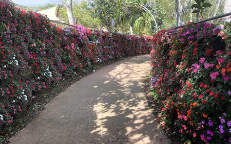 beautiful flower garden with walk way and archway to wedding ceremony