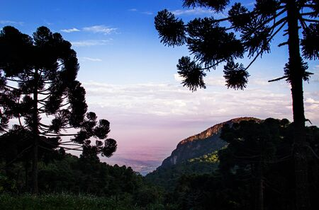 beautiful lanscape with silhouette tree and mountain on twilight time