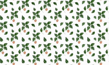 Scandinavian style seamless pattern. Tropical monstera plants growing in pots and single leaves on a white background. Vector. Stock Illustratie