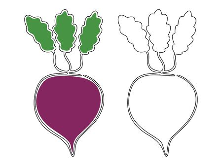A set of two contour beets drawn in one line with and without colored spots on a white background. Vector. Illusztráció