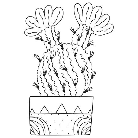 Black and white flowering Echinocereus in a rectangular pot. Isolated North American cactus for a coloring book. Vector doodle.